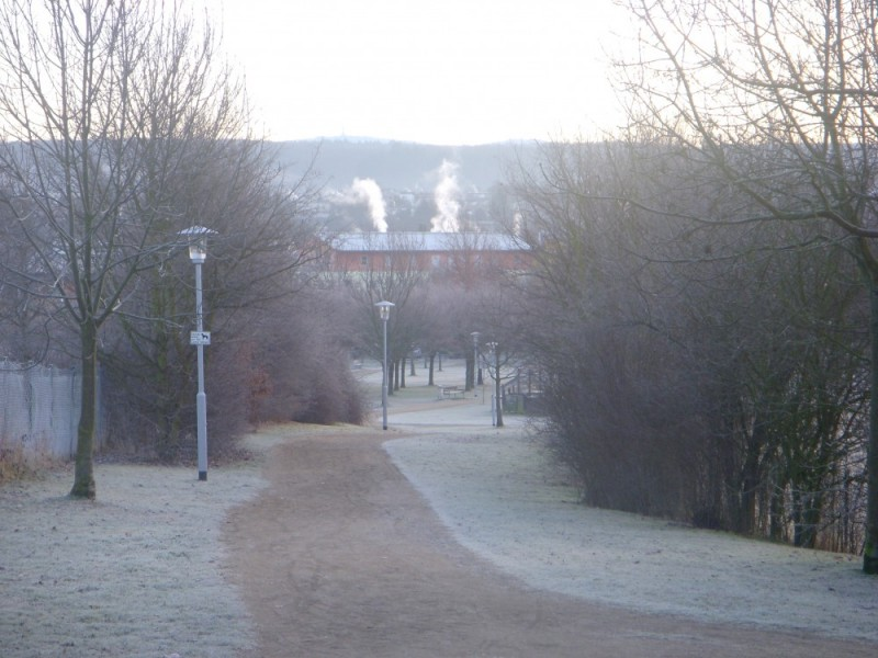 Morning Frost - The Park