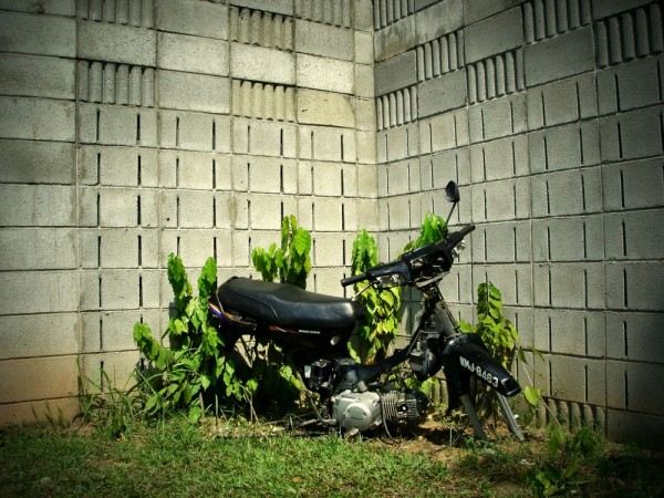 a burned motorcycle beside highway