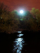 shooting beside a river in leeds