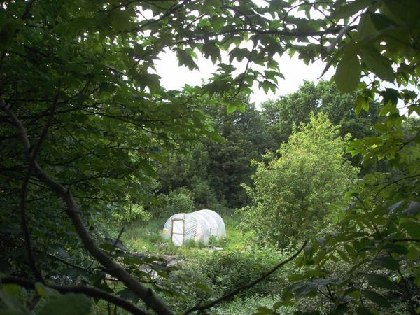 greenhouse in leeds