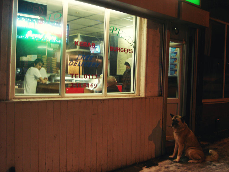 dog outside a kebab shop
