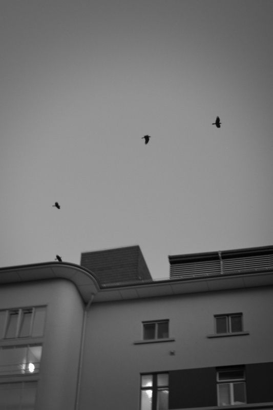 Alicehospital, Darmstadt