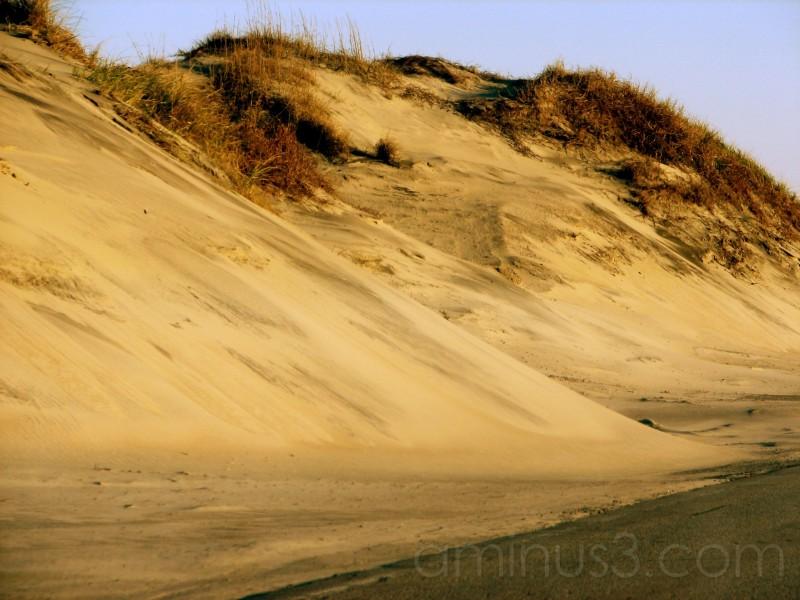 Sand Dunes on a beach