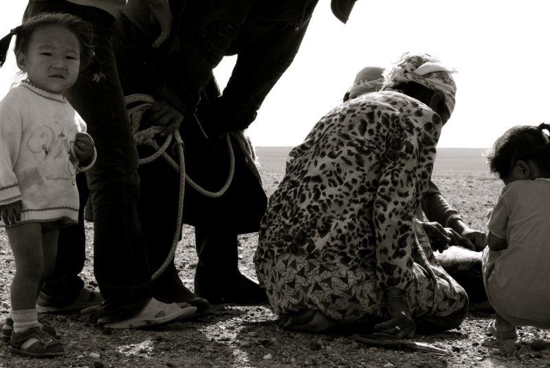 Mongolian rural life