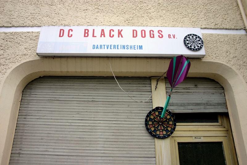 Dogs of Dart