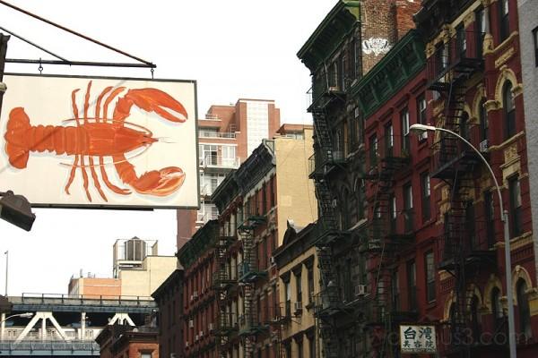 Lobster takes Manhattan