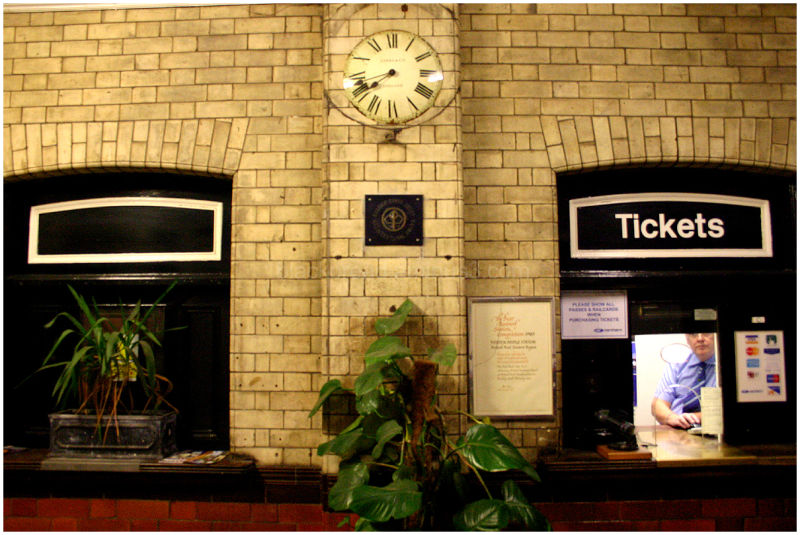 Plants and Ticket Man