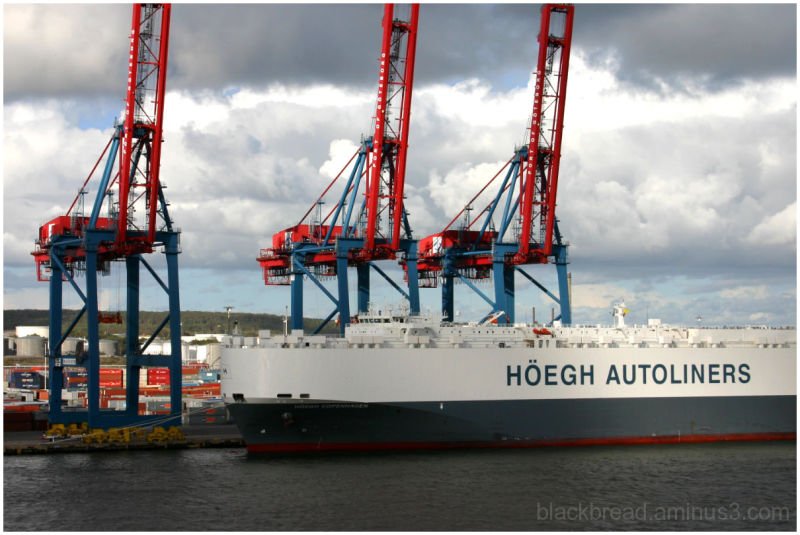RoRo Ocean Transportation