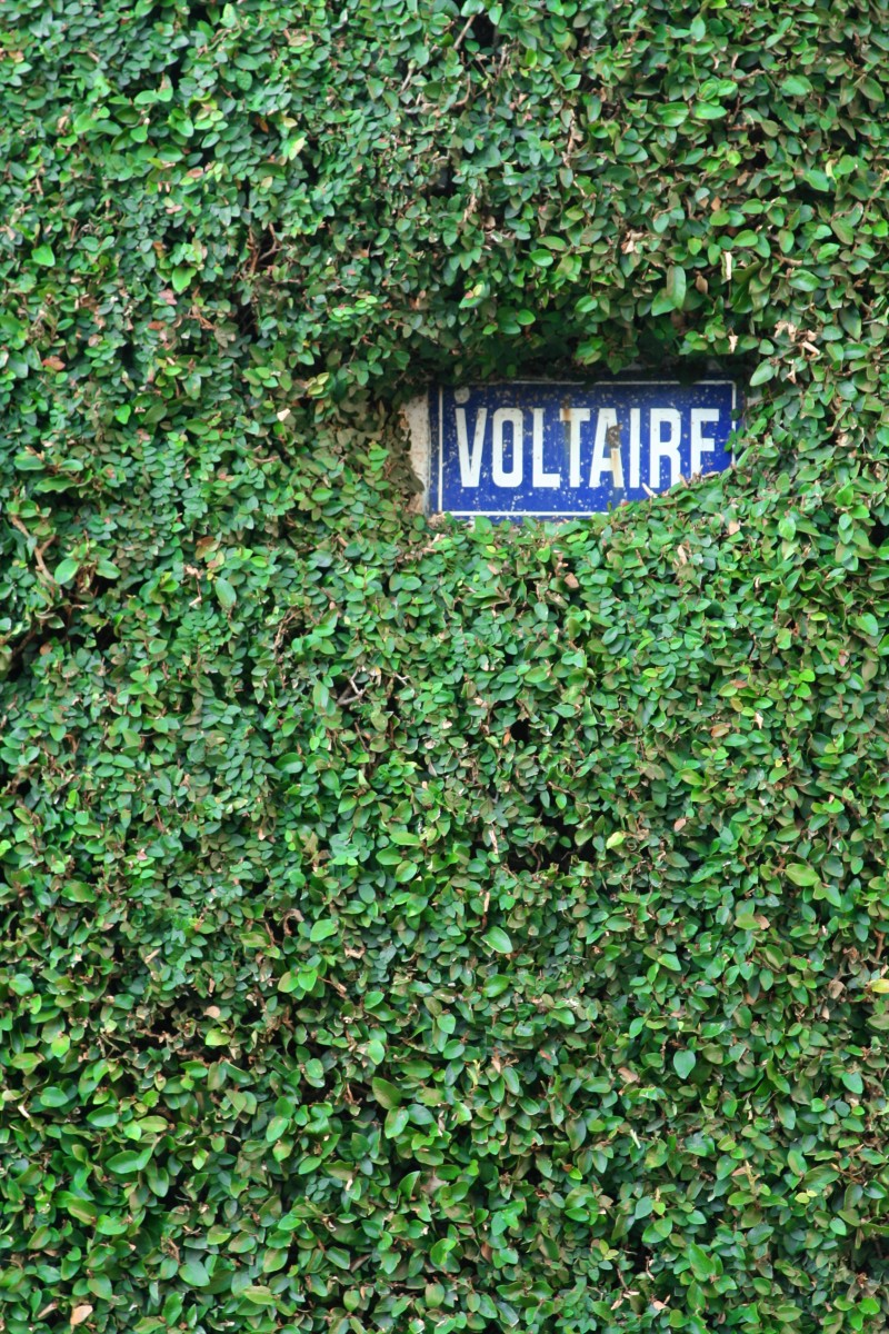at the corner of voltaire