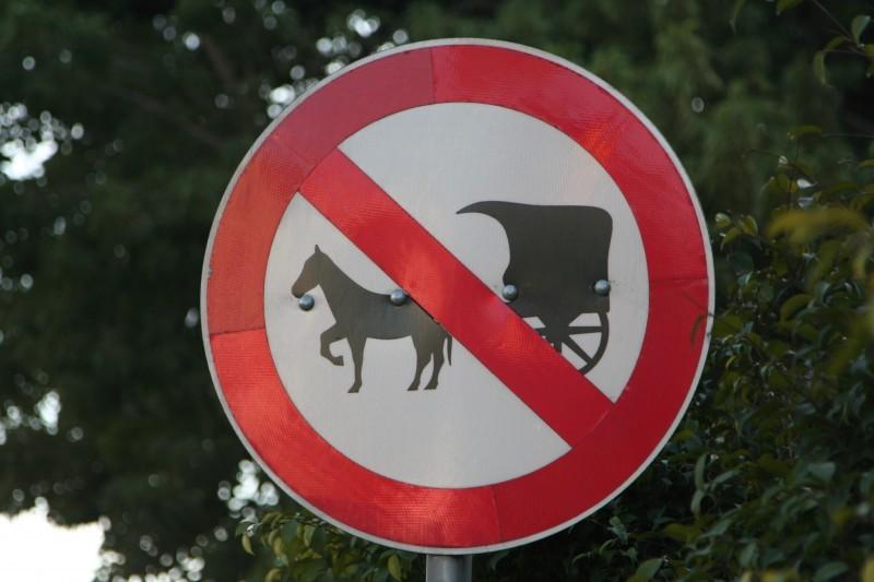 no buggies allowed