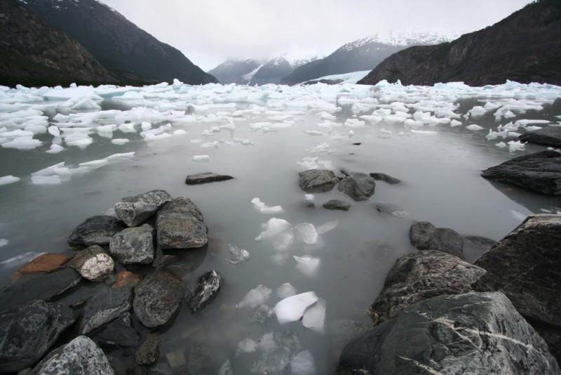 a lake full of icebergs