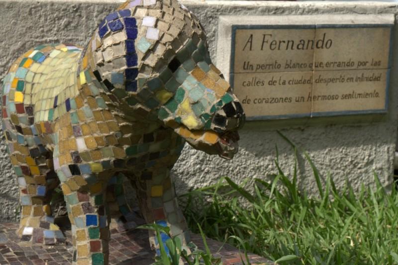 fernando remembered