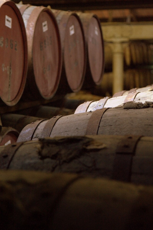 casks of scotch