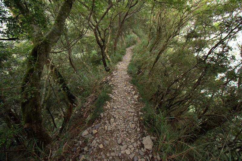trail on beidawu mountain