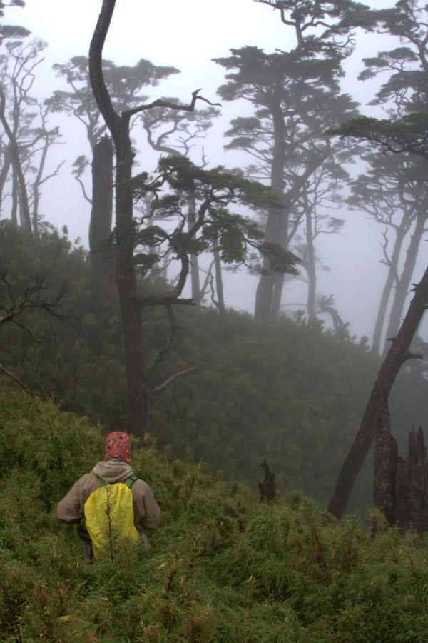 hiker climing beidawushan
