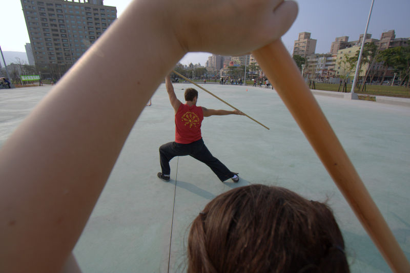 kung fu posing