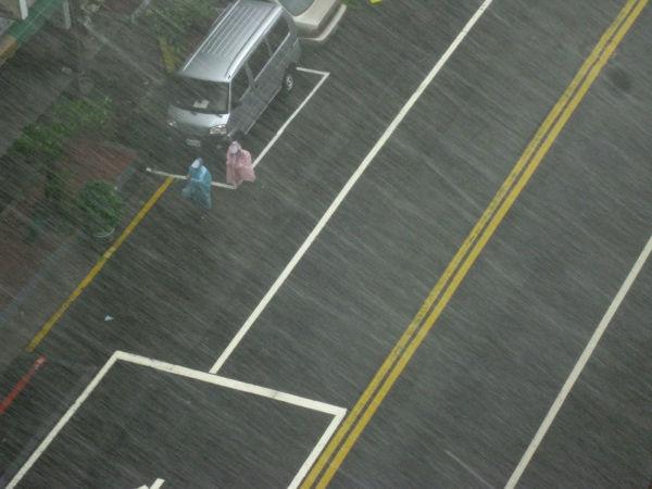 walking in the typhoon