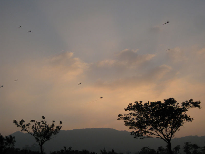 kiteplay at sunset