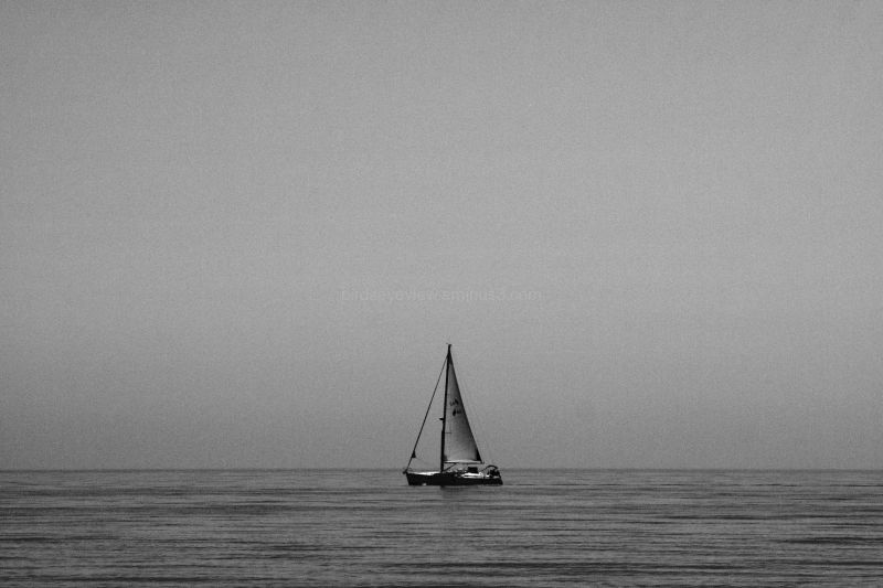 black & white boat