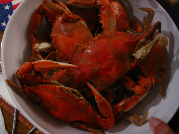 cooked crabs