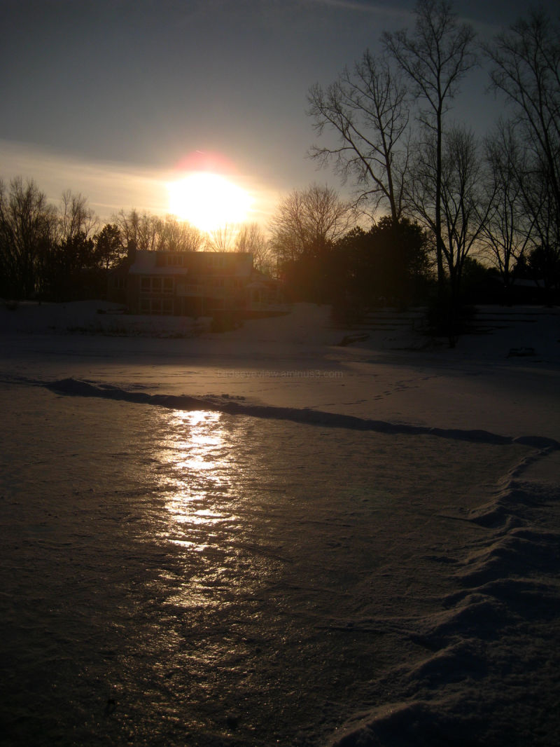 backyard ice skating