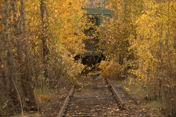 prince george train