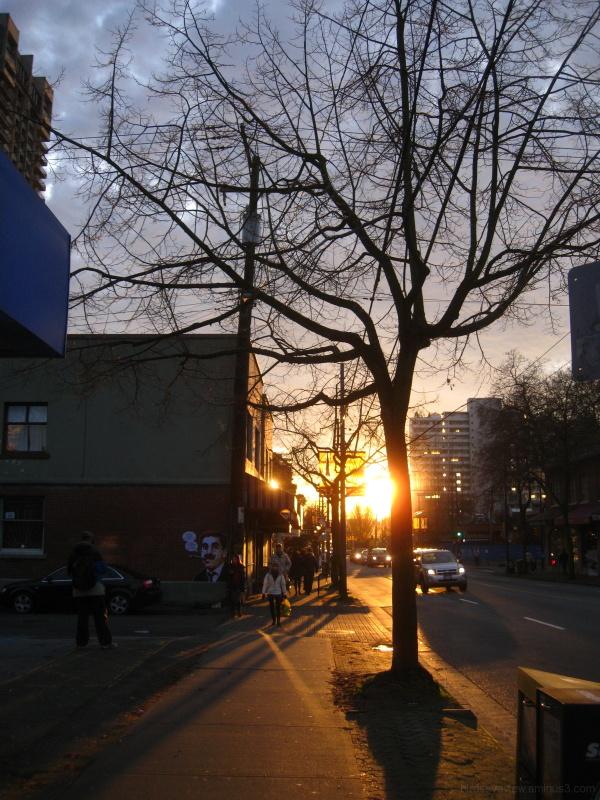 sunset on denman
