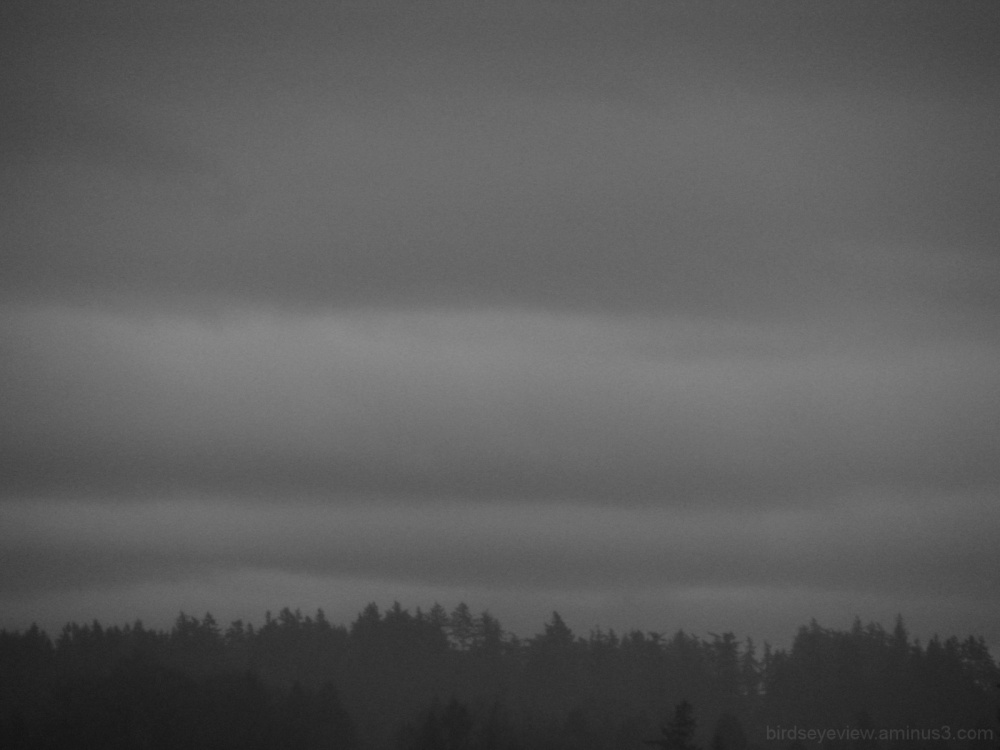 grey and dreary