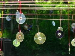 cds to scare birds