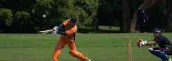 cricket in stanley park