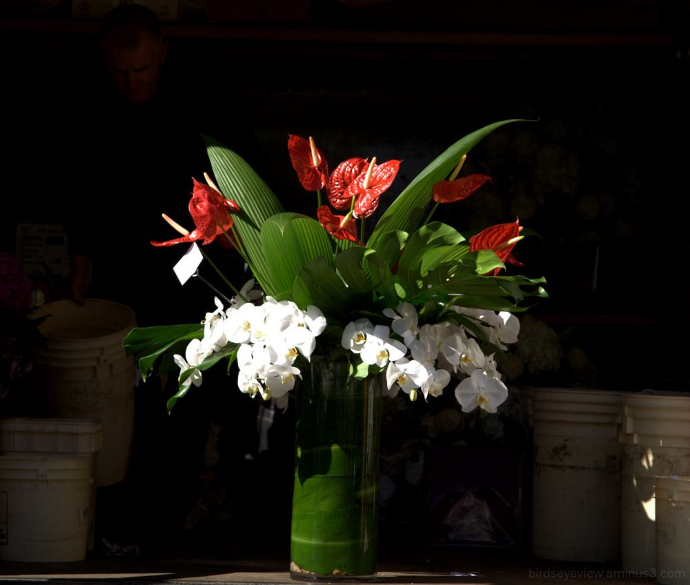 flowers on delivery