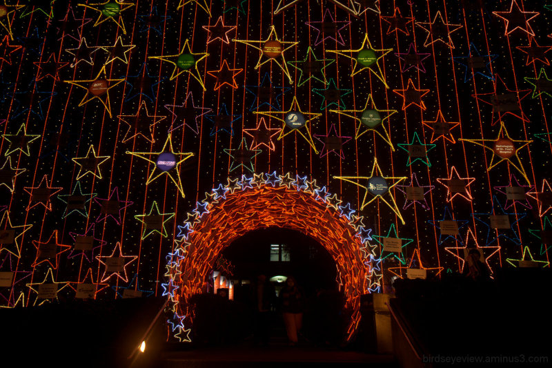 Lights of Hope at St. Paul