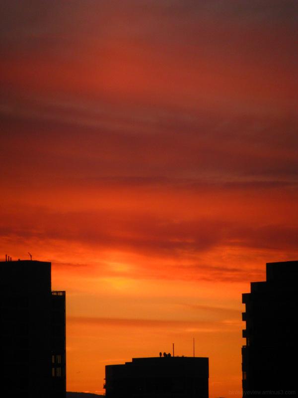sunrise reds
