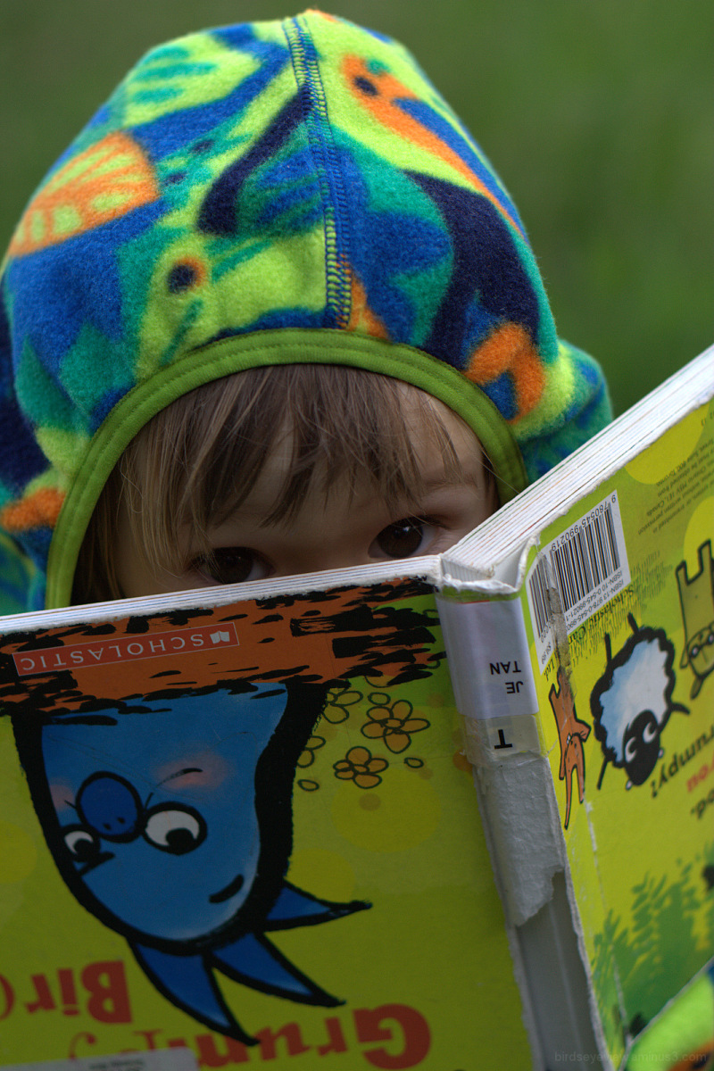 peekaboo with a book