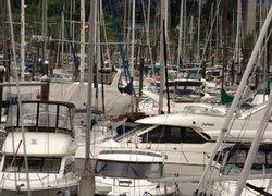 boats at granville island
