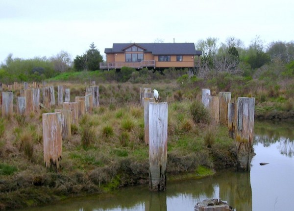 Arcata Marsh Interpretive Center