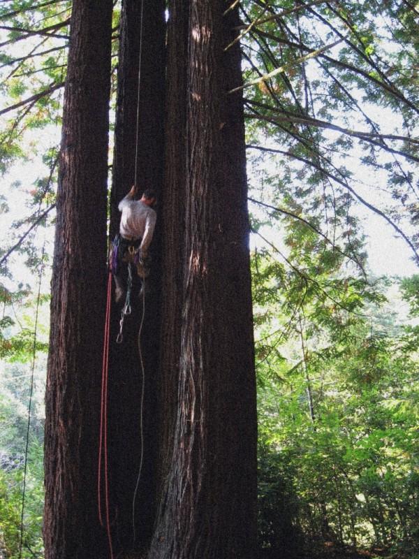 Climbing  training at action camp