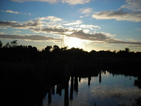 Sky and marsh in Arcata