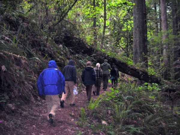 Hikers in Grizzly Creek Redwoods State Park