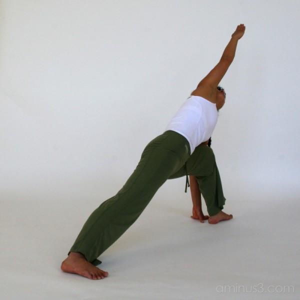 The art of yoga #4