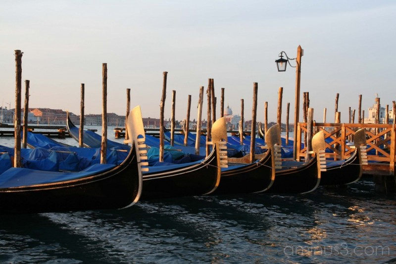 Venice, gondolas at sunrise
