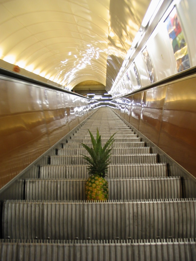 the pineapple has left the building