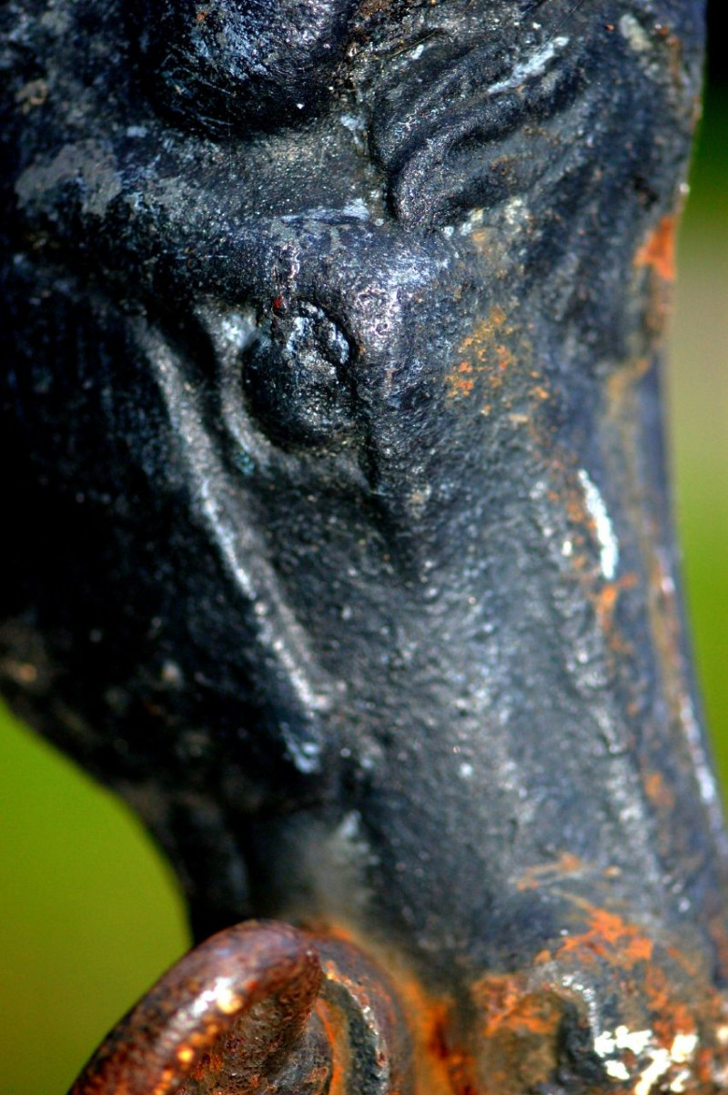 Iron horse head ornament