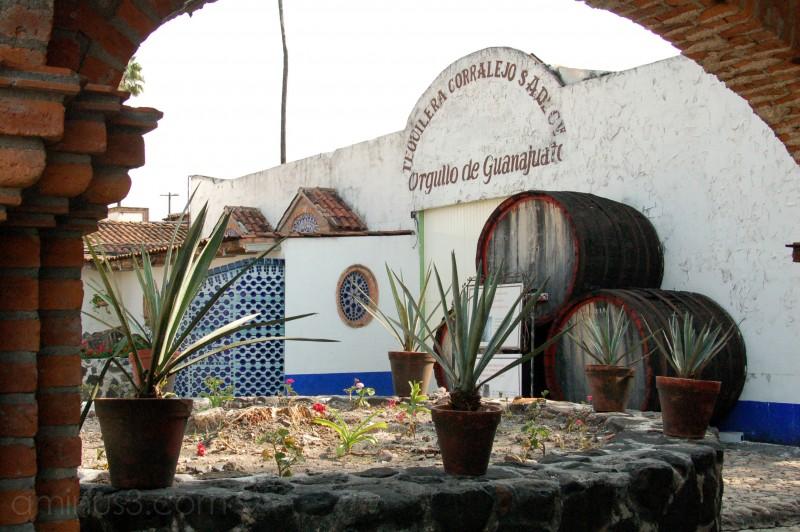 Tequila Factory Corralejo, Penjamo, Mexico