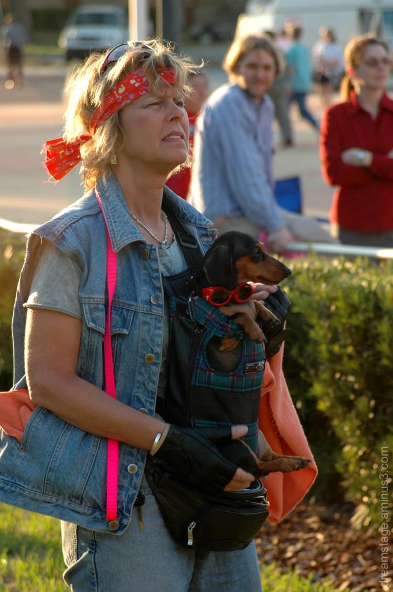 Wiener Dog Papoose
