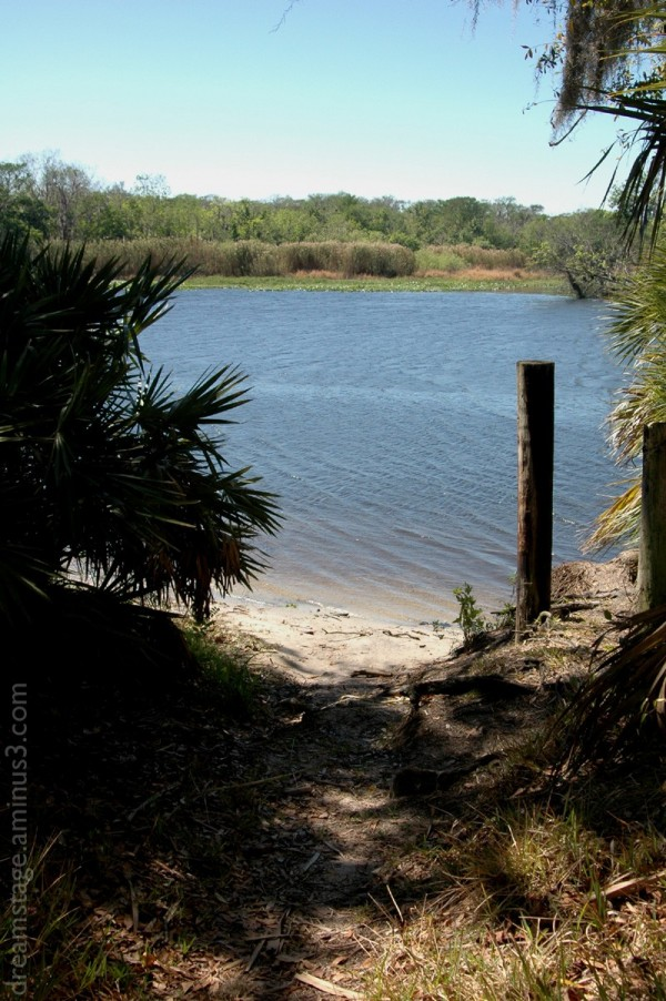 st johns river volusia county florida