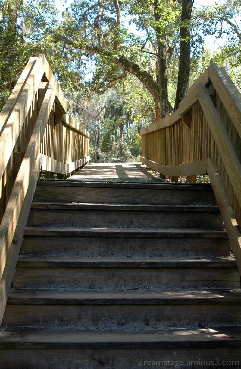 boardwalk steps