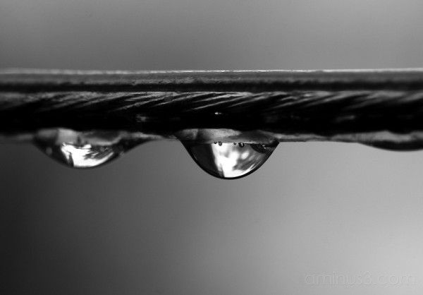 water drops on a wire