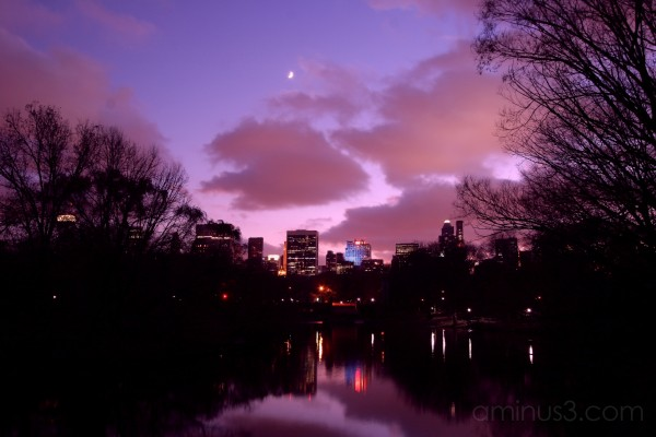 Central Park - I