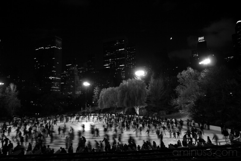 Central Park - IV